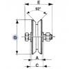 Rad für Schiebetore 2 Kugellager Throat V Verschiedene Durchmesser IBFM