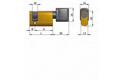 Halbzylinder mit Omec Knöpfe Messing Oval 40mm L 30/10